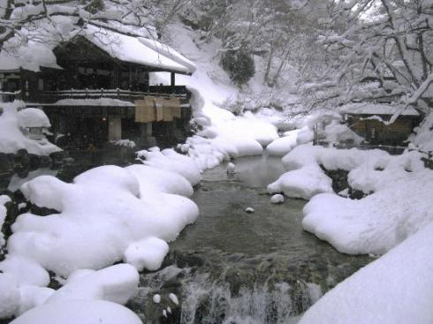 """Went bathing in an outdoor Onsen, Takaragawa.  They told me it was the size of """"470 Tatomi mats""""."""