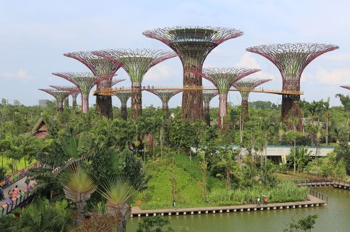 I went to Gardens by the Bay which was hard to appreciate in the humidity but the Google images are spectacular.